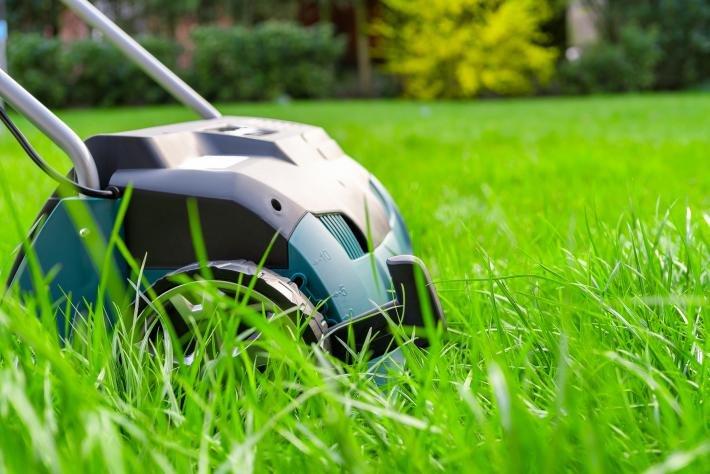 Rasen Vertikutieren Der Richtige Weg Zum Satten Grünen Garten